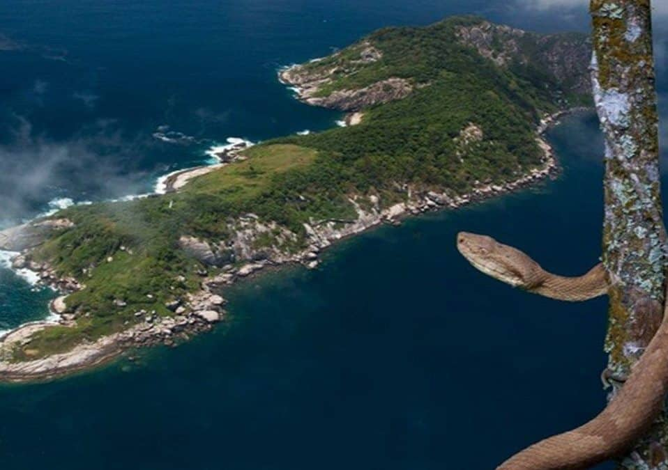 The most dangerous island on earth