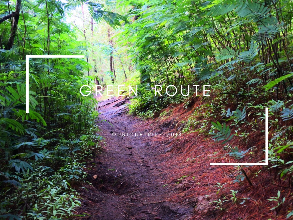 GREEN ROUTE