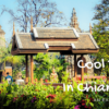 chiang mai what to see